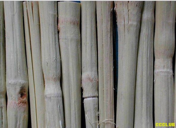 甜竹&豆寇草都是什么?
